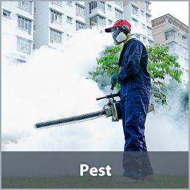 Shonn Brothers UK Wholesale Pest Control